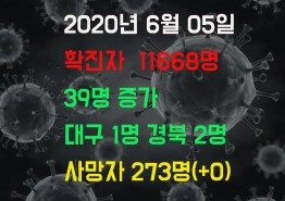 2020년 6월 5일 코로나 19 발생 현황