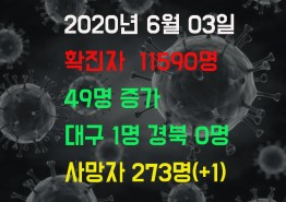 2020년 6월3일 코로나 19 발생 현황