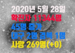 2020년 5월 28일 코로나 19 발생 현황